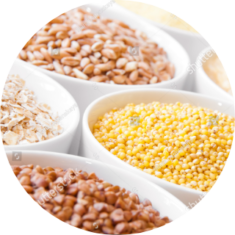 stock-photo-cereals-in-white-bowls-oats-millet-rice-buckwheat-wheat-spelt-279877958